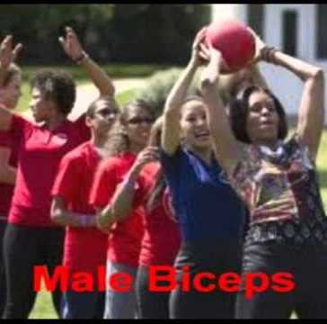 malebiceps