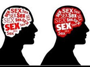 Gay sex knjižnica