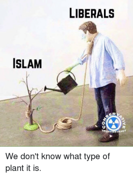 islam-liberals-se-truth-strag-we-dont-know-what-type-2955801