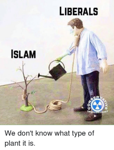 islam-liberals-se-truth-strag-we-dont-know-what-type-29558011